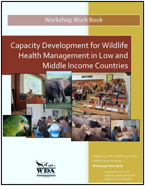 Capacity-Development-for-Wildlife-Health-Management