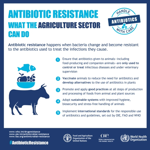 World Health Organization infographic on antibiotic resistance and what the agriculture sector can do (credit: WHO).