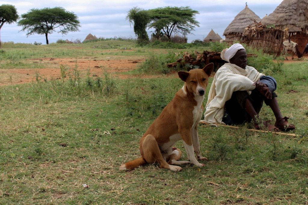 A pastor and his dog, Yabello, Ethiopia (photo credit: ILRI/Camille Hanotte).